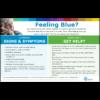 Feeling Blue Poster - English